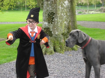 Sean with Luna our previous Great Dane